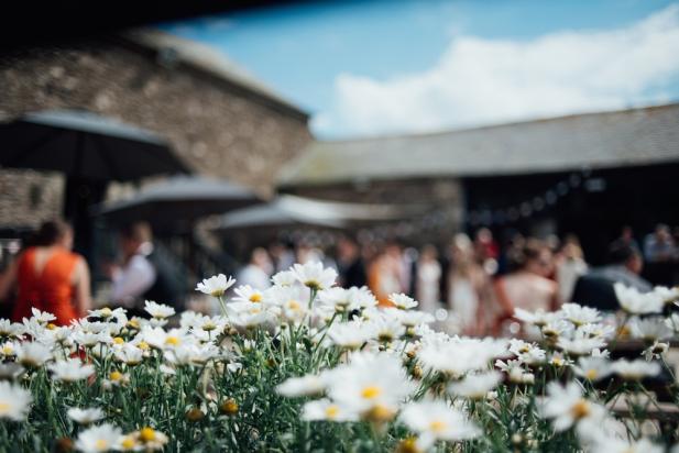 new-barton-barns-devon-wedding-liberty-pearl-photography